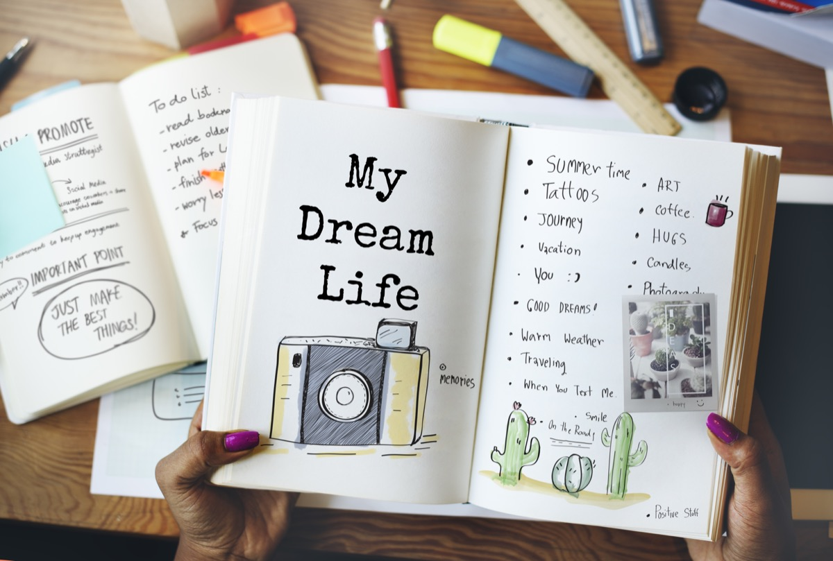 my dream life planner concept