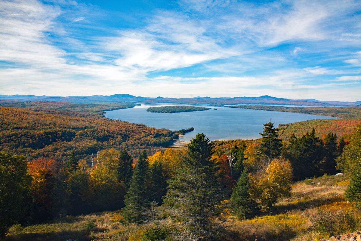fall foliage forest with a lake in the background
