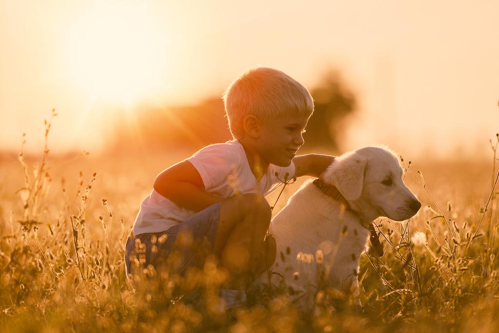 puppy-and-boy