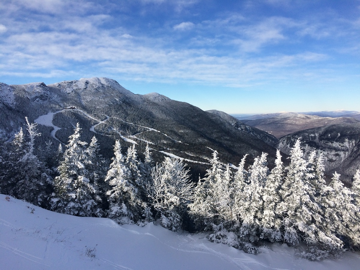 snow covered trees and mountains
