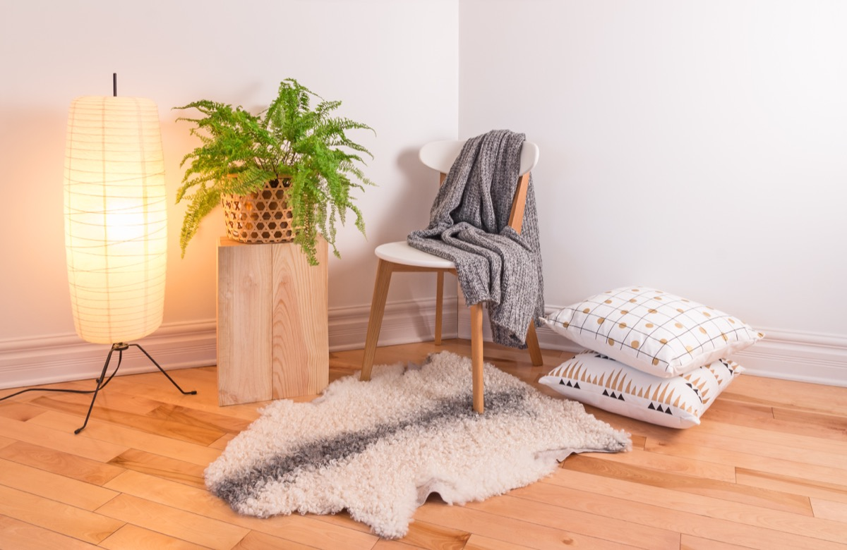 throw rug on wooden floor and plant and chair