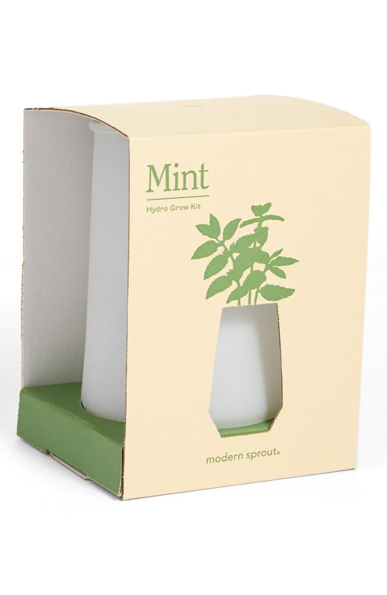 tumblr mint grow kit