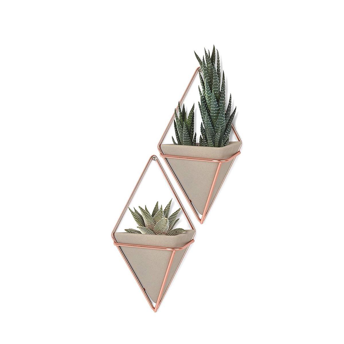 umbra-trigg-hanging-planter