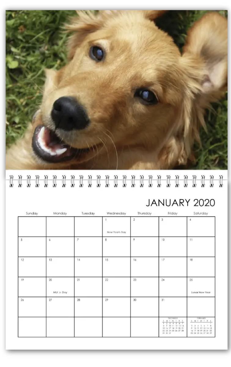 walgreens calendar