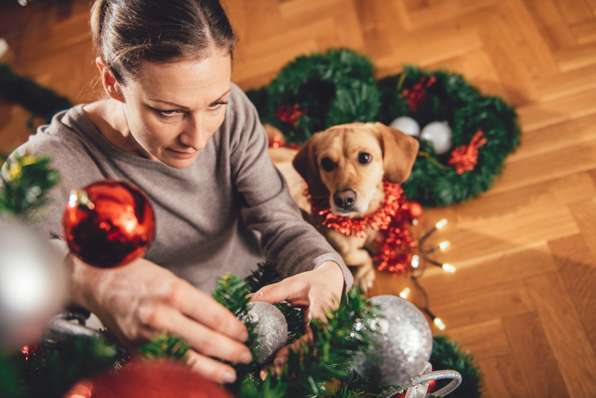 woman decorating christmas tree as her dog looks on