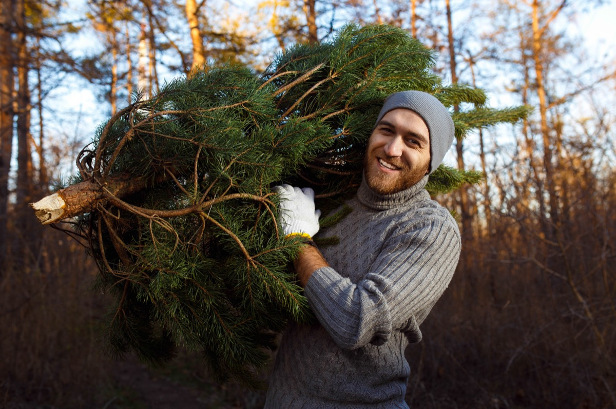 young man carrying christmas tree