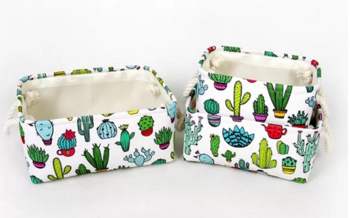 cactus storage bins