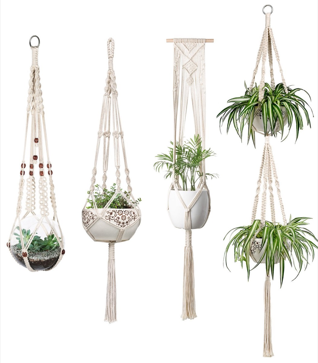 five macrame plant holders with plants