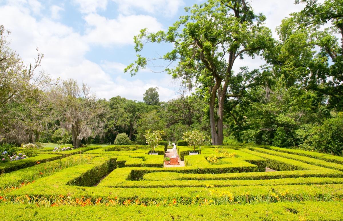 maze in a garden louisiana