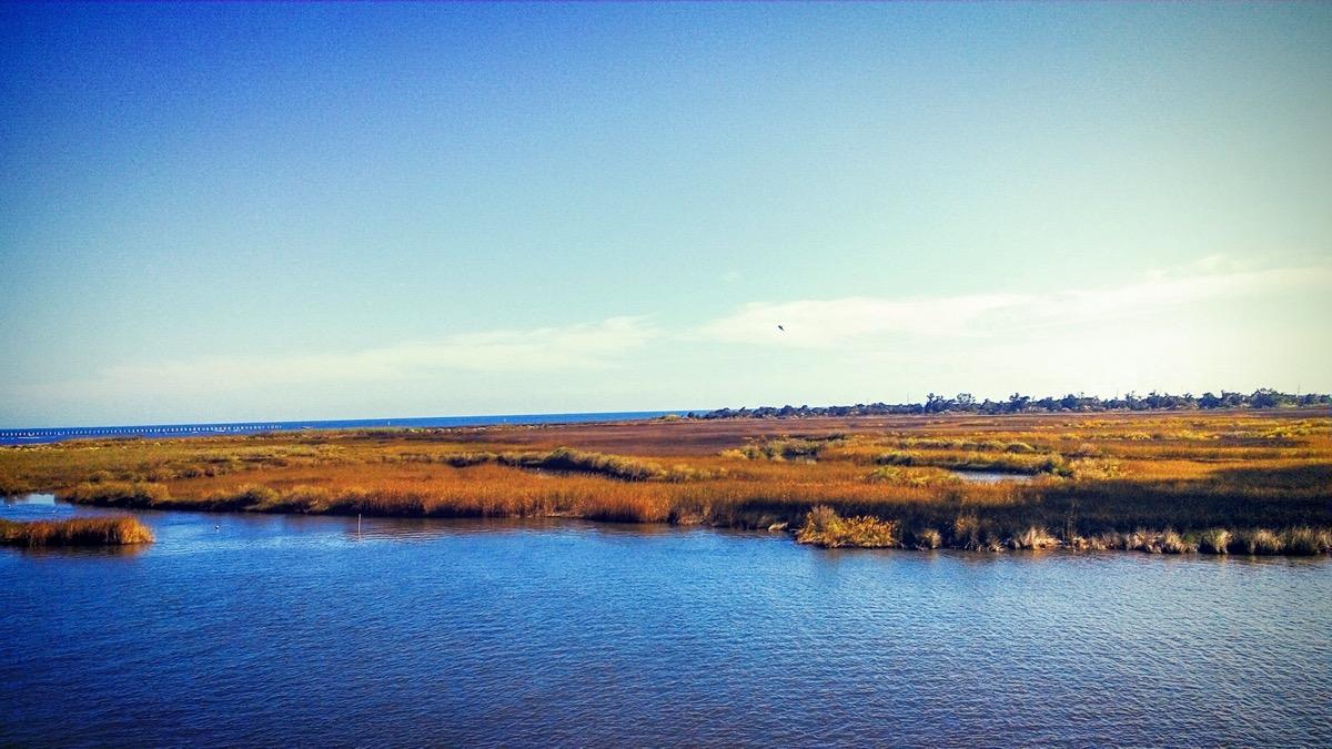 the bayou caddy at bay st louis ms