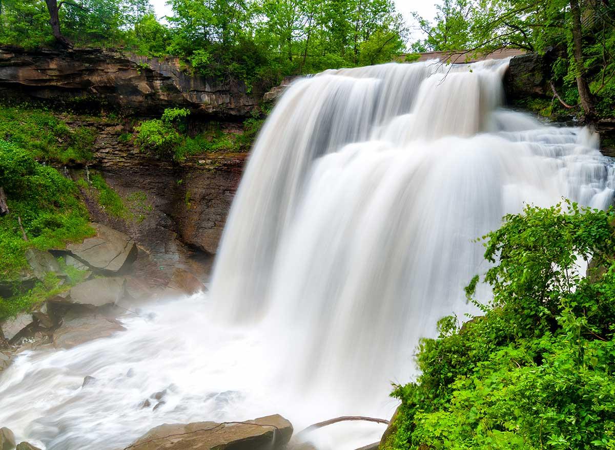 waterfalls in lush foliage