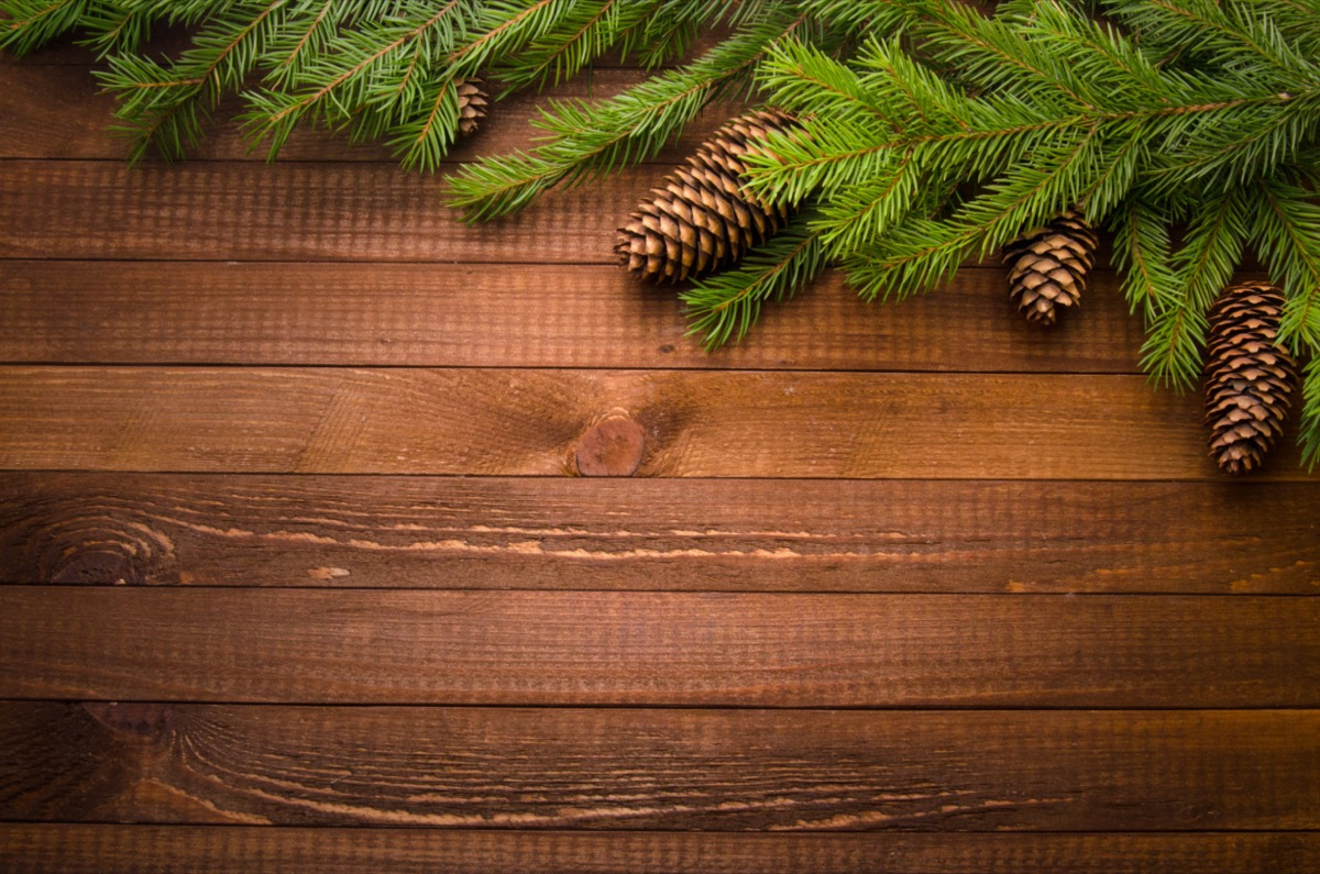 evergreen branches and pinecones on wooden table