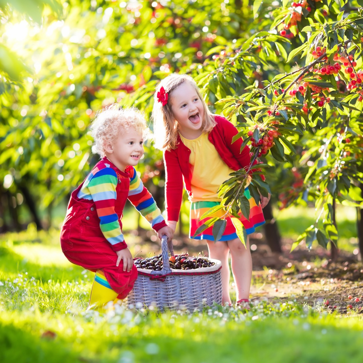 Kids berry picking and smiling on farm