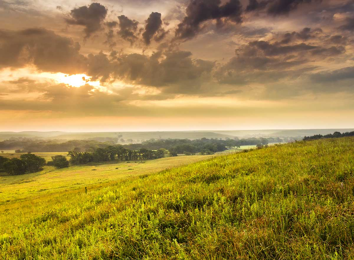 tallgrass prairie kansas on a mild summer morning