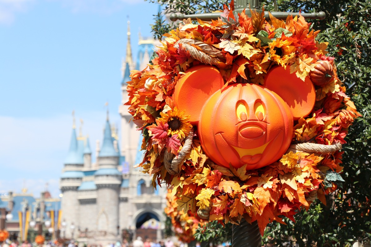 not so scary mickey mouse pumpkin carving in disneyland