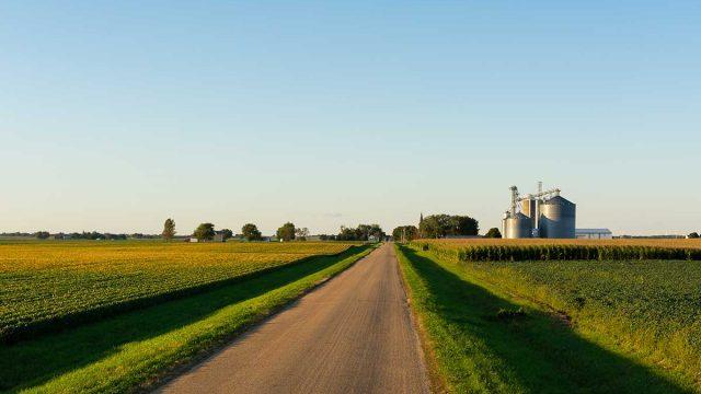 long road cuts through green farmland