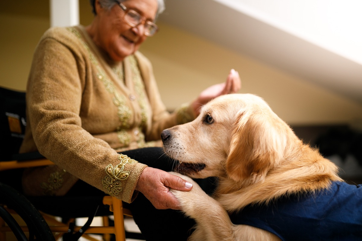 senior woman with a service dog