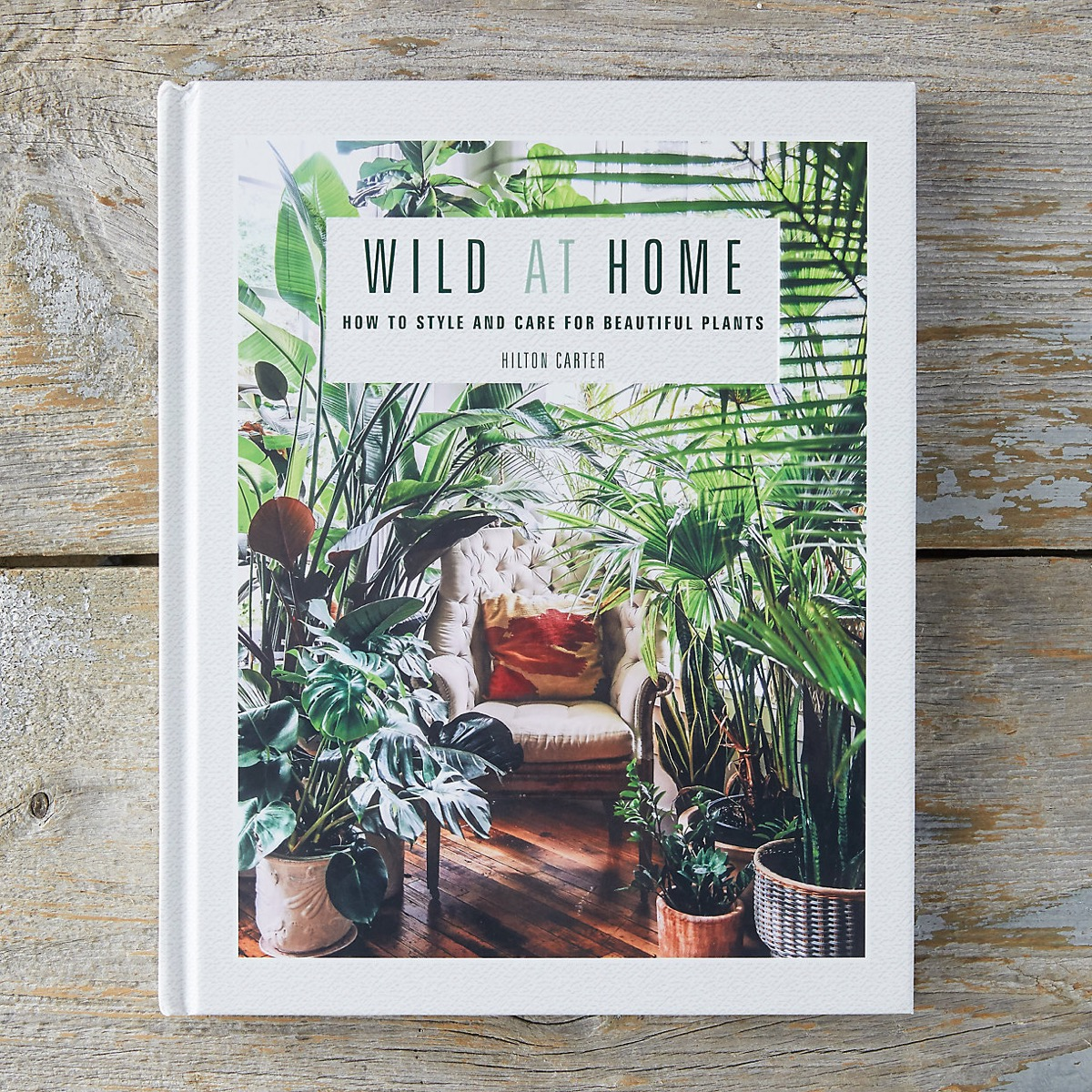 Wild at Home book on wood background