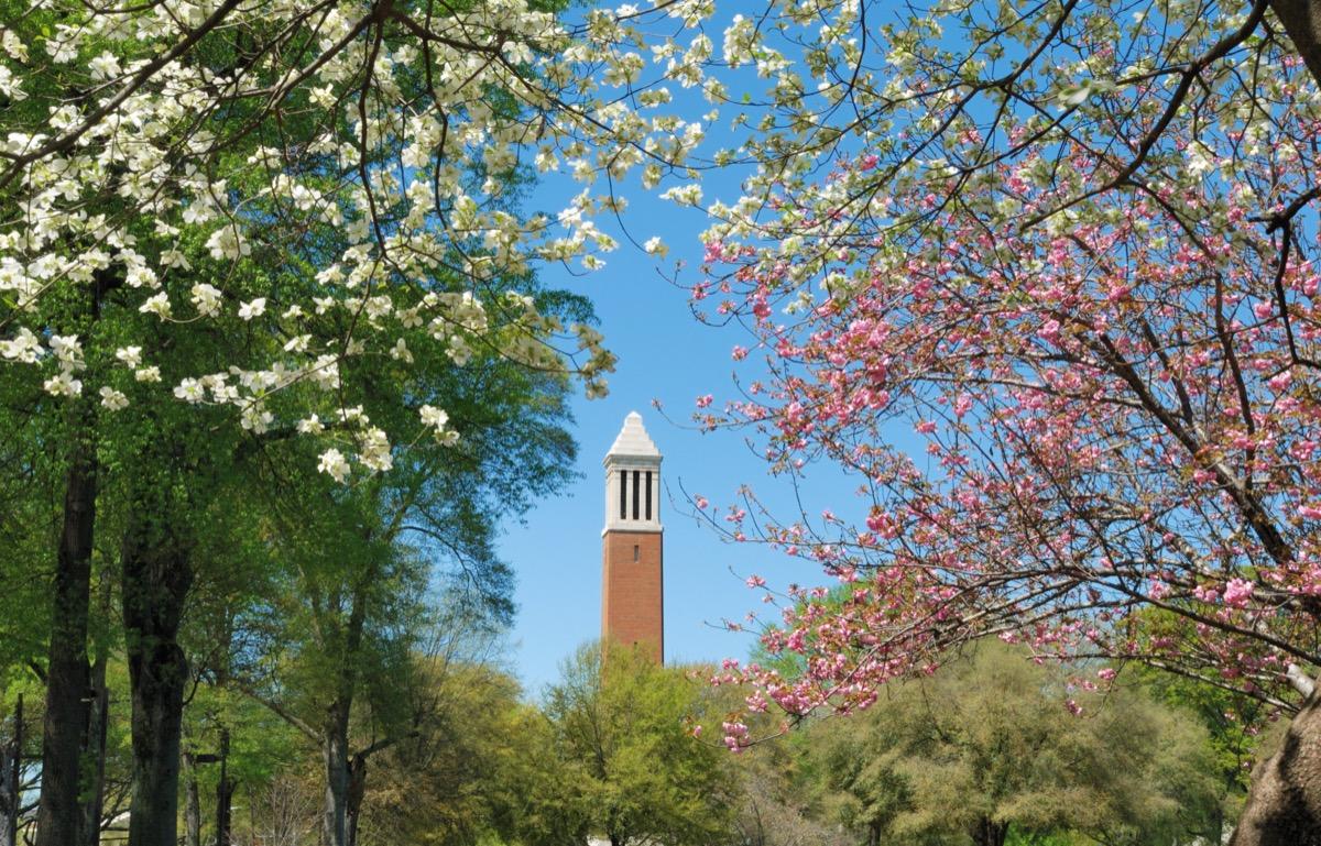 tuscaloosa alabama university of alabama