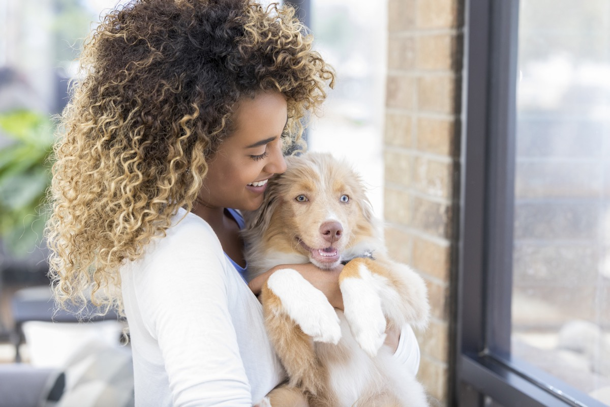 confident young woman snuggles adorable puppy while looking through window in her home.