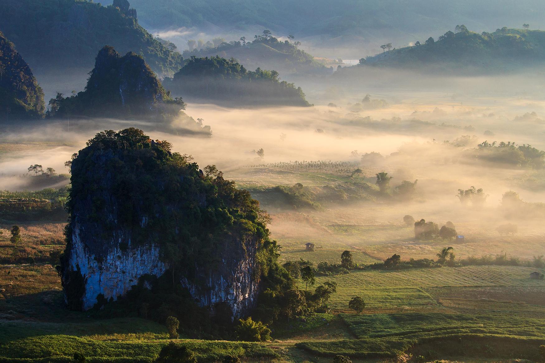 phu langka forest Thailand