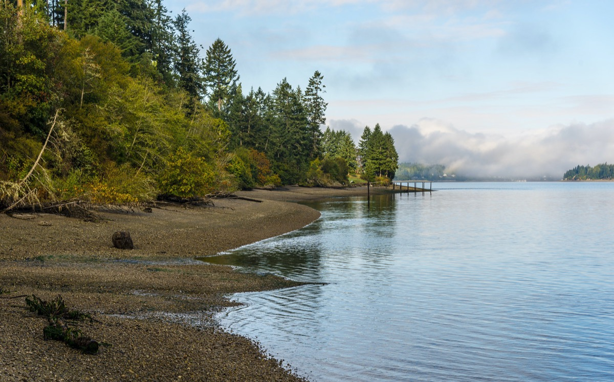 fall morning on Anderson Island, Washington