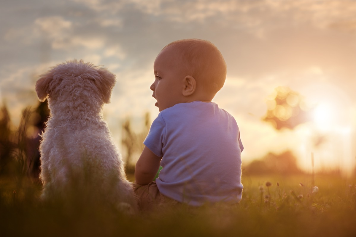 Baby and dog having chat