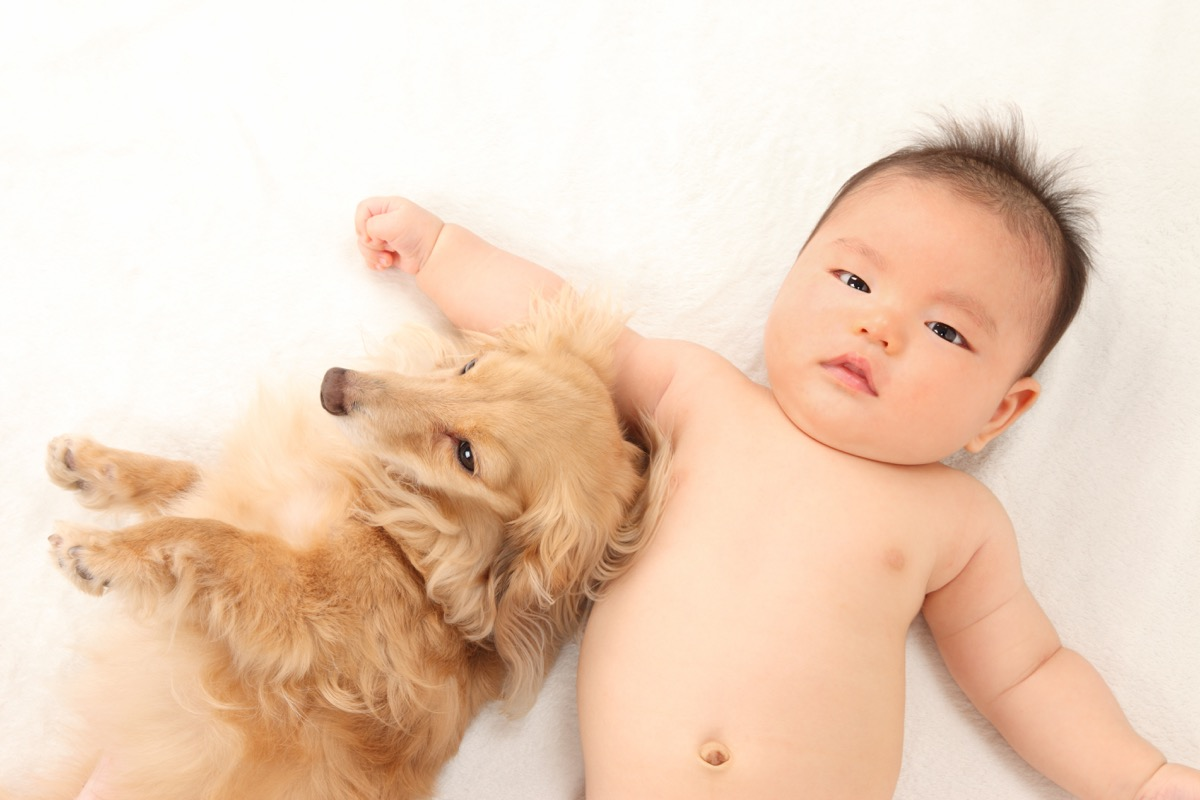 Baby and dog laying