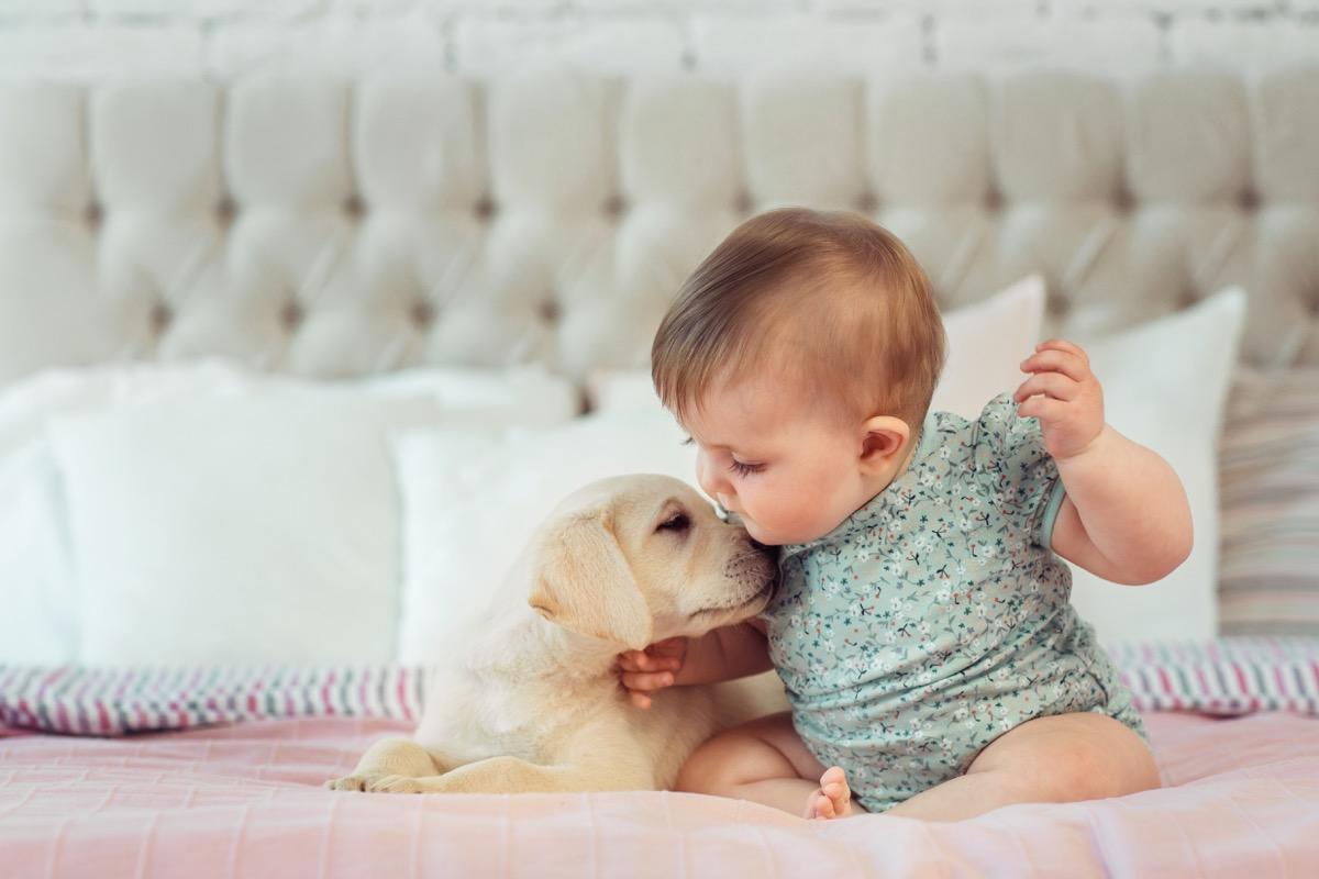 Baby kissing tiny puppy