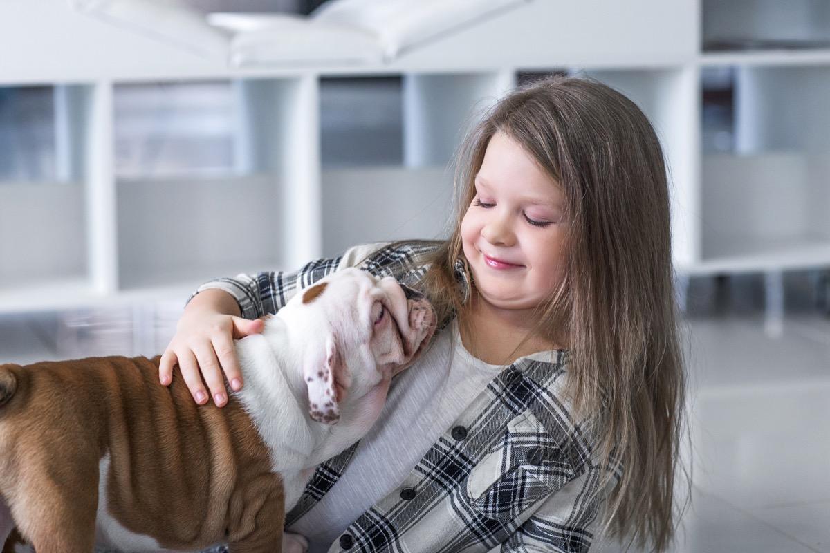 Little girl with bulldog