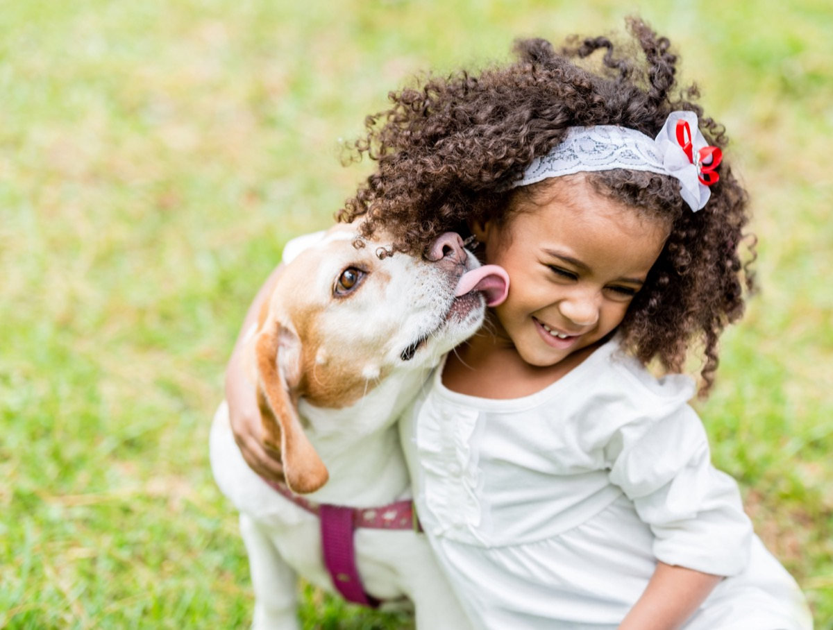 Child getting a kiss from family dog