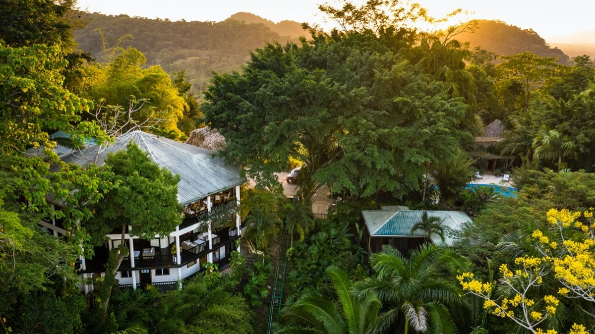 aerial view of copal tree lodge
