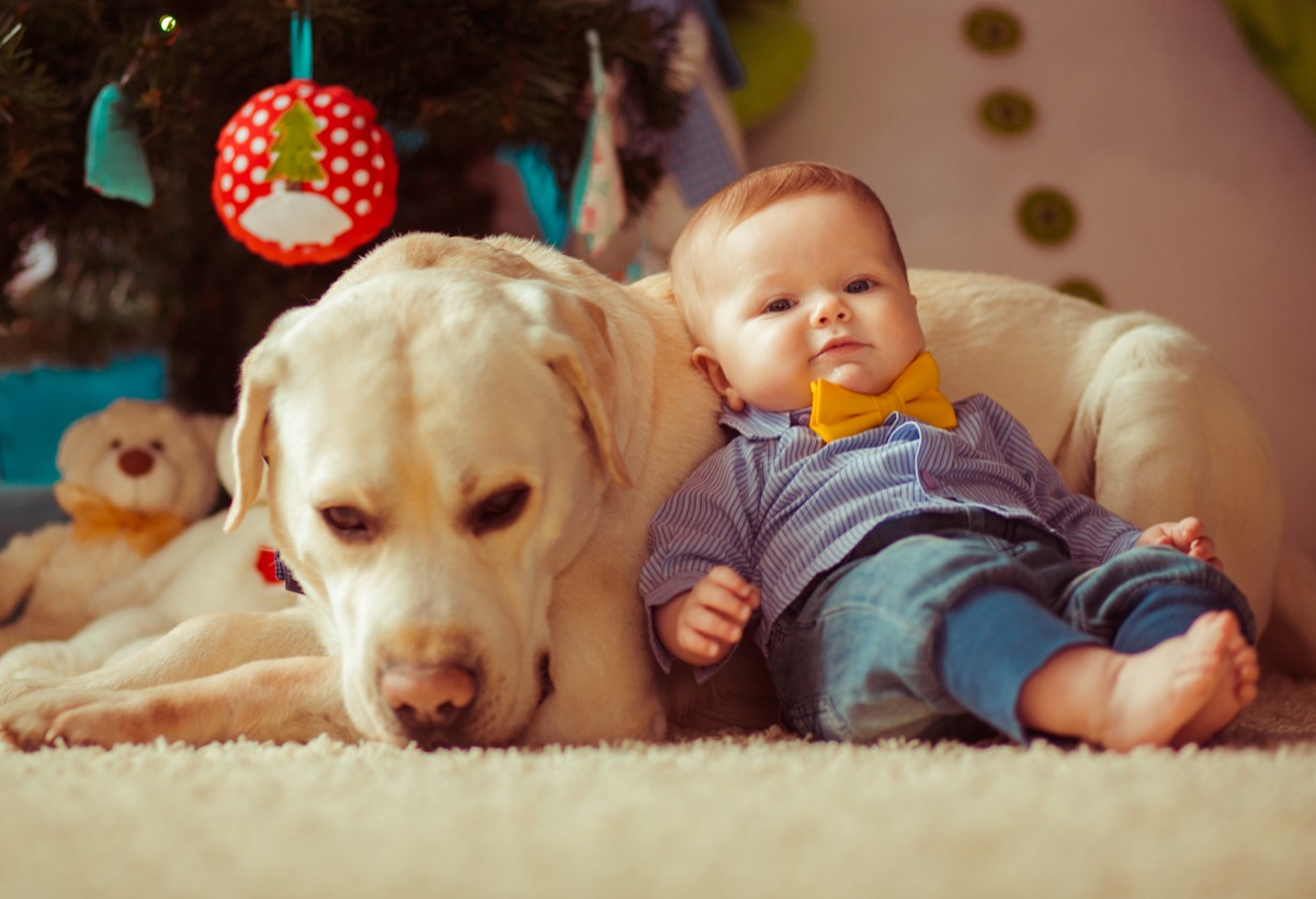 Dapper baby hanging out with his dog