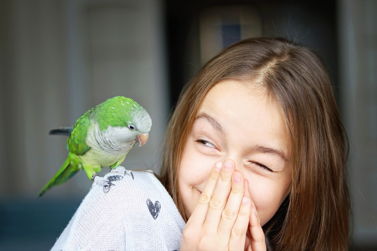 young girl with pet parakeet on her shoulder