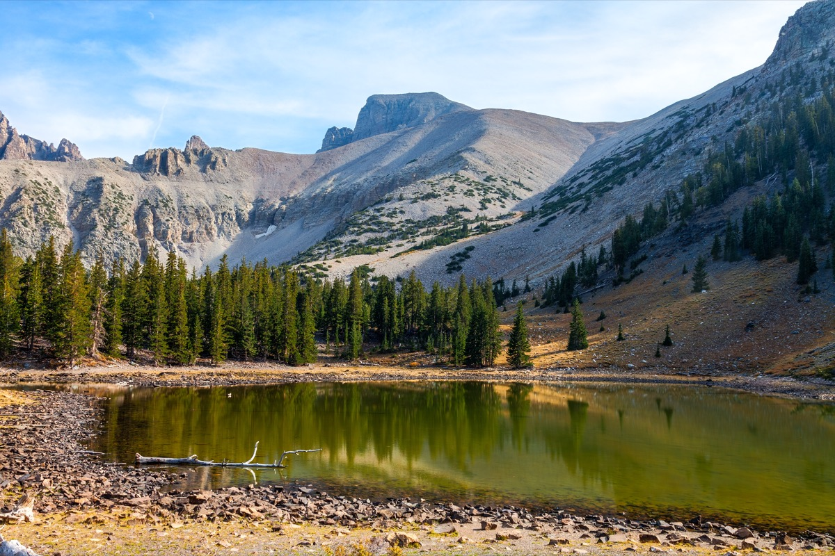 Alpine Loop trail in the Great Basin National Park Nevada
