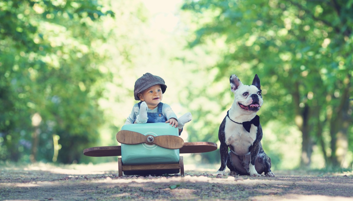 A dog and kid