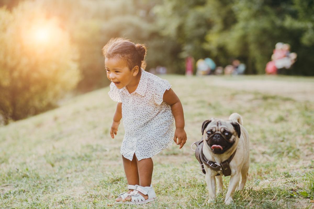 Pug and little girl
