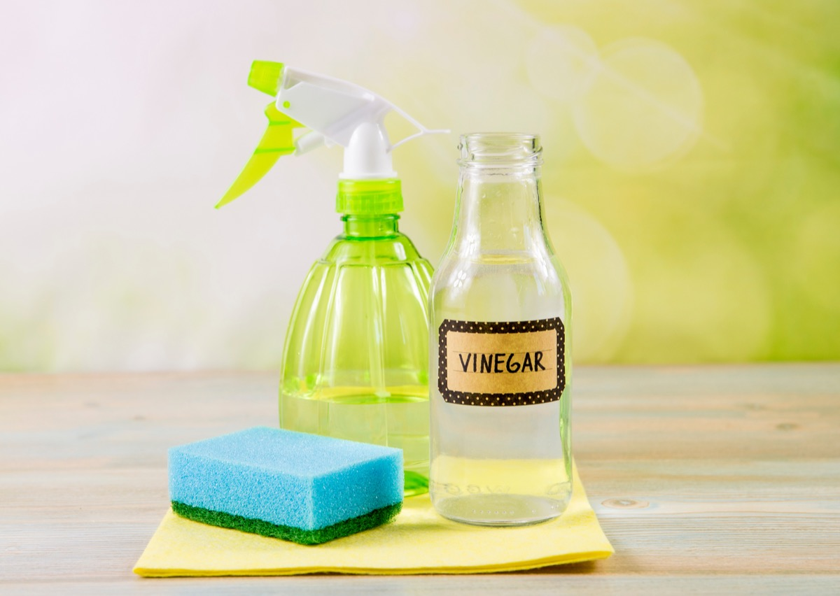 Vinegar cleaning product