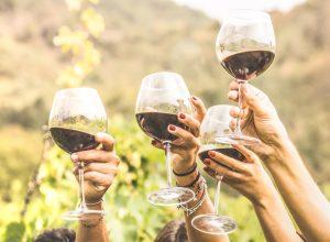 Wine tasting women cheers