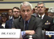 coronavirus task force chief anthony fauci at congressional hearing re: coronavirus on march 11
