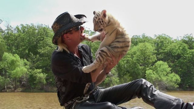 the tiger king on netflix