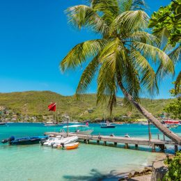 Bright and colorful image of Bequia. Palm trees at the water, blue sky and white clouds, boats in the harbor of Port Elisabeth. Saint Vincent and the Grenadines.