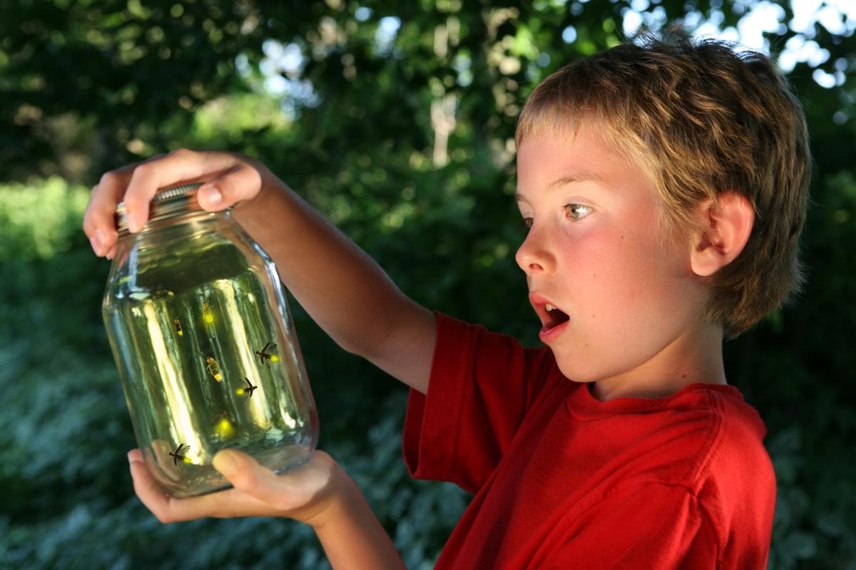 Boy catching fireflies in a mason jar