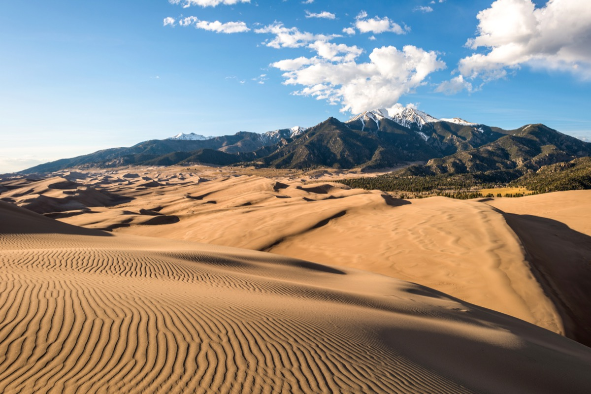 Sunset view of sand waves at the top of Great Sand Dunes, Great Sand Dunes National Park
