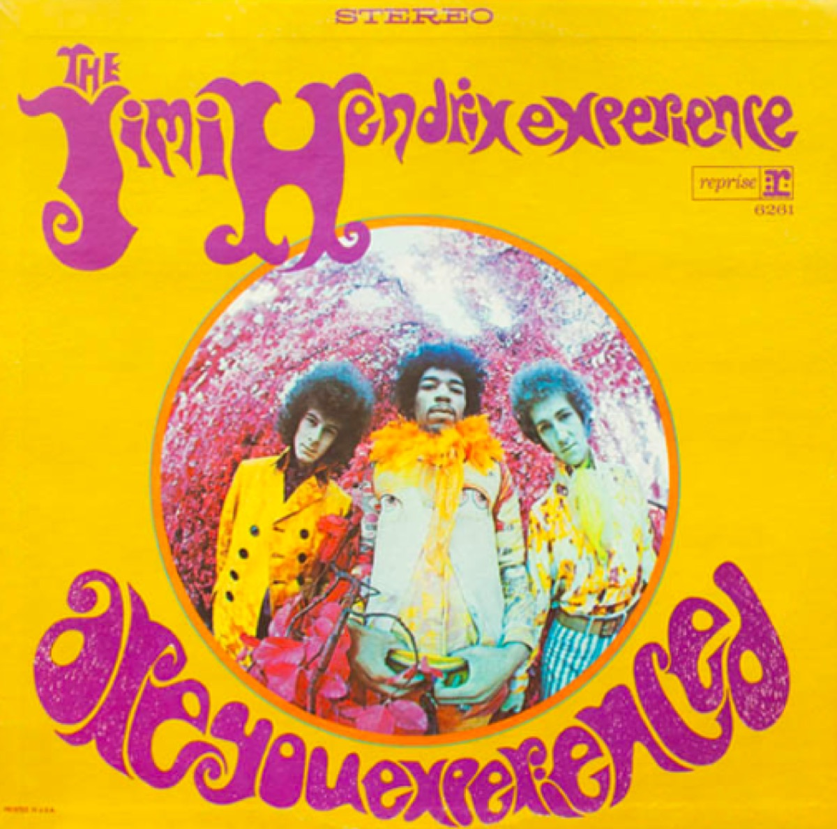 Are You Experienced album