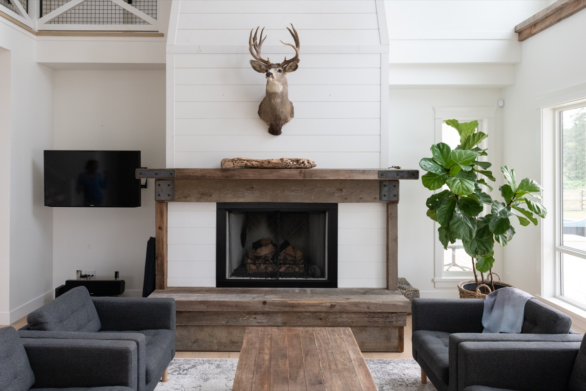 living room with deer head mount and reclaimed wood accents
