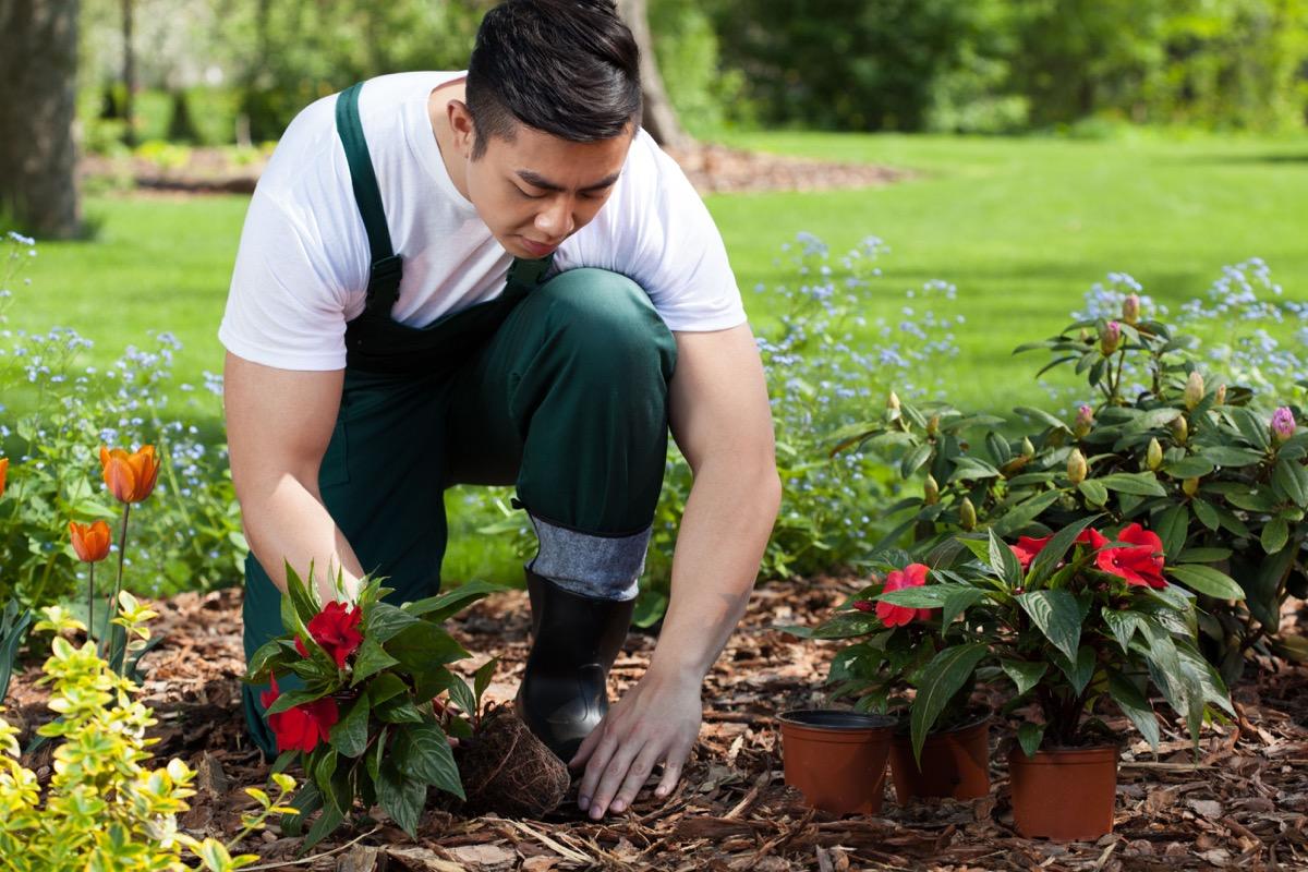 Man planting flower in garden