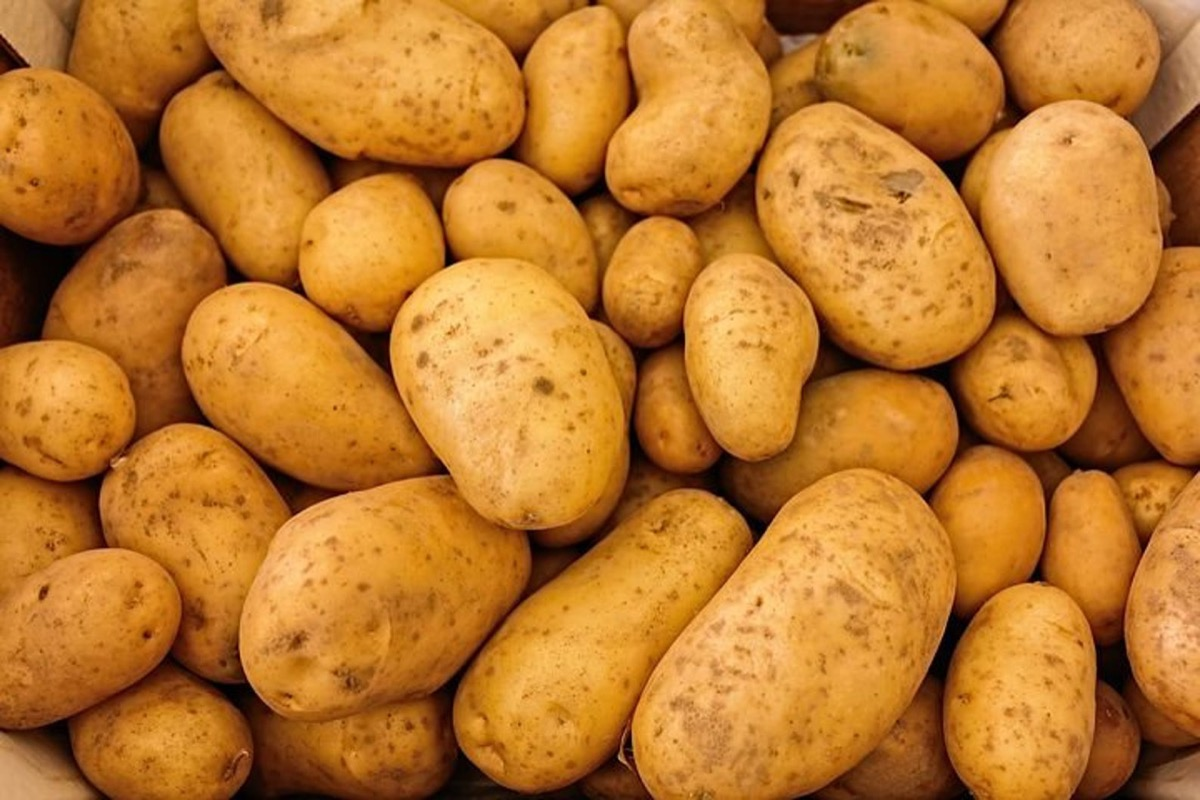 stack of potatoes