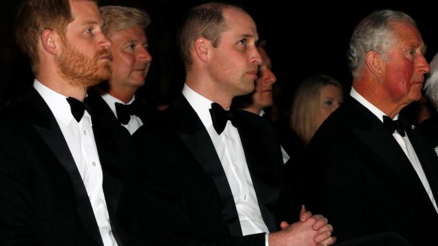 Prince Harry, Prince William, and Prince Charles sit in the front row during the global premiere of Netflix's 'Our Planet' at the Natural History Museum in Kensington, London, hosted by Sir David in 2019