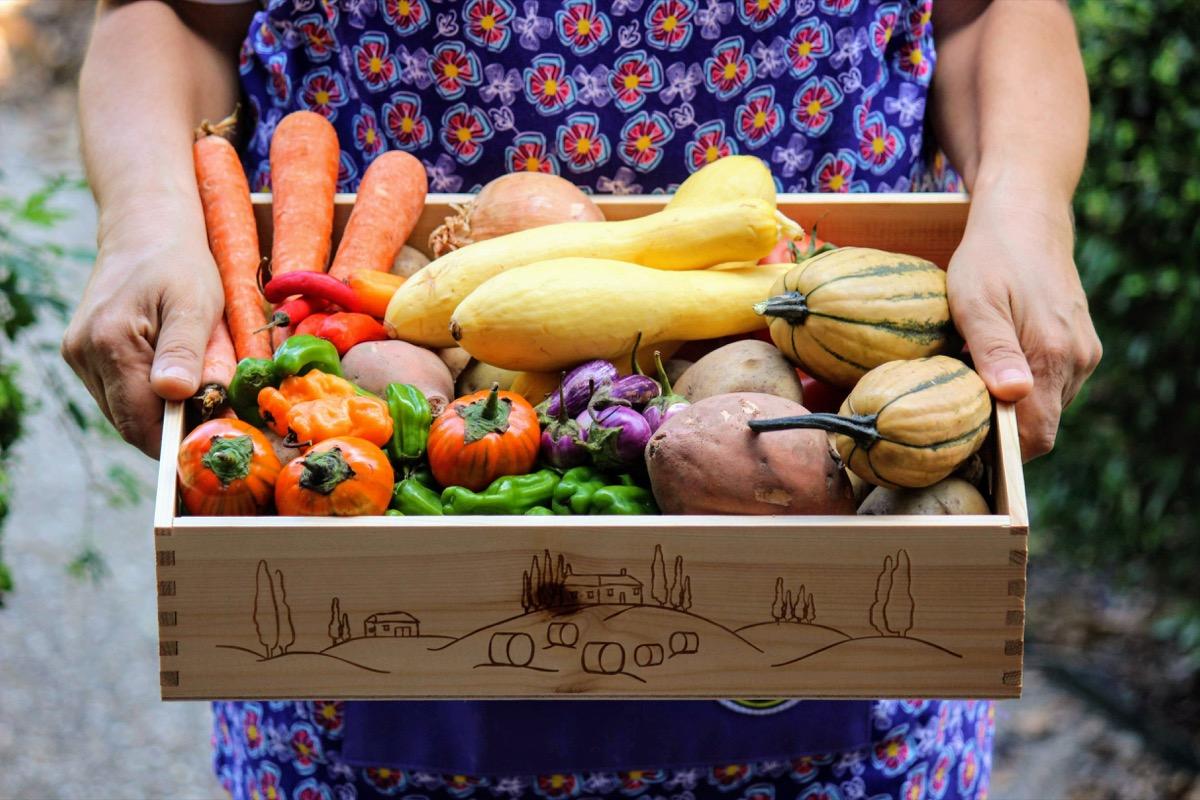 Woman holding farm fresh produce